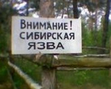 Сибирская язва на Алтае