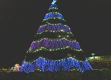 Волгоград елка