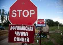 АЧС в Волгоградской области