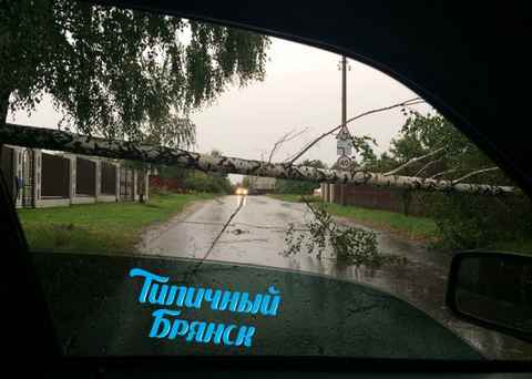 Ураган в Брянске 27 июля
