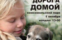 Ярмарка «Дорога домой», приуроченная к Международному дню защиты животных, пройдет в Волгограде 1 октября