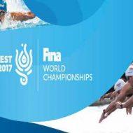Медальный зачет ЧМ 2017 по водным видам спорта в Будапеште, результаты, расписание, прямые трансляции на 22 июля