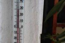 Жара до +39 градусов ждет жителей Волгоградской области в ближайшие выходные