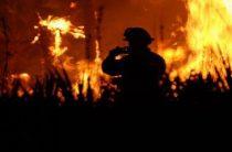 Ночью неизвестные устроили поджог здания районного суда в Жирновске