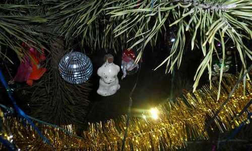 Губернатор Андрей Бочаров объявил в Волгоградской области 31 декабря выходным днем