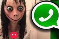 Действующий номер Момо в WhatsApp в России может оказаться новым вирусом, взламывающим гаджеты