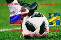Матч Россия-Швеция футбольной Лиги наций 2018 пройдет 11 октября в Калининграде
