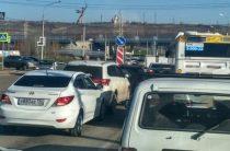 Стал известен список автобусов, которые в Волгограде заменят маршрутки после их отмены