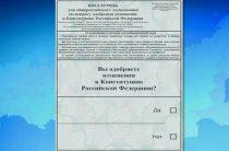 Голосование по внесению поправок в Конституцию РФ может быть перенесено на июнь