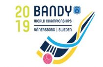 Итоговые результаты чемпионата мира 2019 по хоккею с мячом в Швеции