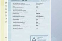 Изменения в водительских удостоверениях и ПТС вступили в силу в России 3 декабря