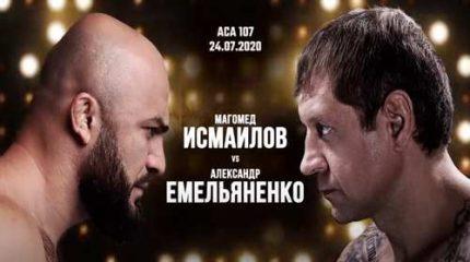 Где смотреть трансляцию боя Емельяненко – Исмаилов 24 июля 2020 года