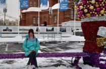 Легкий мороз и небольшой снегопад прогнозируют синоптики в Волгограде в ночь с 31 декабря на 1 января